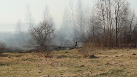 Firefighters extinguish dry grass and burning forest during a fire, spring, fire danger, landscape. Pollution stock footage