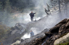 Firefighters extinguishin forest fire Stock Image