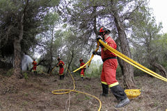 Firefighters on forest with water pipe Royalty Free Stock Photos