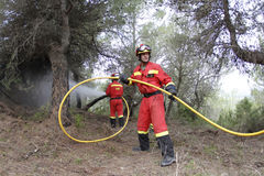 Firefighters On Forest Fire Royalty Free Stock Photo