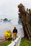 Firefighters train near the stump. Royalty Free Stock Image
