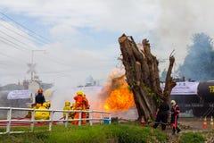 Firefighters train near the stump. Stock Photos