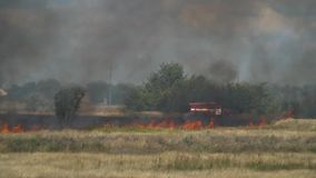 Firefighters walk near the fire truck on the scorched field and are going to put out a fire stock video