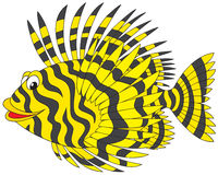Firefish. Vector clip-art of a striped butterfly fish Royalty Free Stock Photography