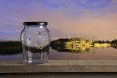 fireflies ηλιοβασίλεμα στοκ φωτογραφία
