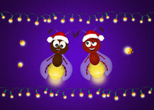 Fireflies celebrate Christmas Stock Images