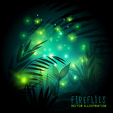 Fireflies and Forest at Night. Fireflies in the forest at night - vector illustration Royalty Free Stock Photography