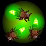Fireflies on green light. Insects emitting glow, living bulbs. Image in cartoon style for games and other design needs. Vector illustration isolated on black Royalty Free Stock Photos