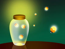 Fireflies. Illustration of fireflies in the jar Stock Image