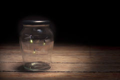 Fireflies in a jar Stock Image
