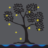 Fireflies lived under trees, waterfront.  Royalty Free Stock Image