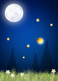 Fireflies in the moonlight. Illustration of fireflies in the moonlight Stock Photos