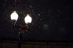 Fireflies by streetlamp Stock Photos