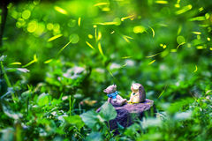 Fireflies with toys/ Night in the forest with fireflies royalty free stock photos
