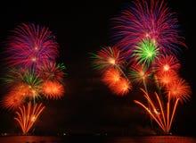 Fireflowers Stock Photo