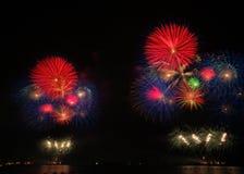 Fireflowers 库存图片