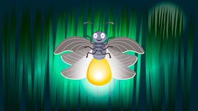 Firefly illuminates the darkness of the night royalty free illustration