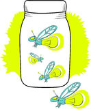 Firefly in a jar. Some captured lightning bugs/ fireflies in a jar with light bulbs glowing behind them. 4 of 4 of my firefly series. everything is in layers Royalty Free Stock Photography