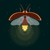 Firefly with open wings. Firefly bug logo design template. Firefly. Flying bug glowworm. Lightning bug with its wings open. Isolated  illustration. It can be Royalty Free Stock Photos