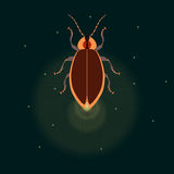 Firefly with wings closed. Firefly bug logo design template. Firefly. Bug glowworm, lightning bug Isolated  illustration. It can be used as a logo, icon Royalty Free Stock Photos