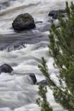 Firehole河丝质冲的潮流在黄石Nationa 库存图片