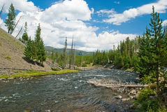 Firehole Creek Stock Photo
