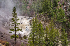 Firehole Falls in Yellowstone National Park Stock Photography