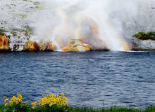 The Firehole Geyser keeps a steady flow of hot water. Royalty Free Stock Images