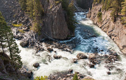 Firehole River Bend Royalty Free Stock Photography