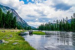 River Runs Through. The Firehole River that runs through Yellowstone National Park in Wyoming Stock Photos