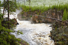 Firehole River in Spring Snow Storm Royalty Free Stock Image
