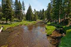 Firehole River Royalty Free Stock Photography