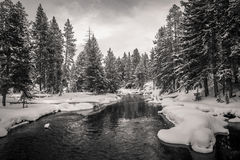 Firehole river, Yellowstone Stock Photography
