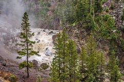 Fireholedalingen van het Nationale Park van Yellowstone Stock Fotografie