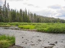 Fireholerivier die door het Nationale Park van Yellowstone vloeien stock foto