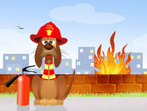 Firehouse Dog Royalty Free Stock Photos