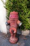 Firehydrant Stock Photo