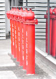 Firehydrants Stockbild