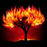 Fireing tree in the night. Vector illustration Royalty Free Stock Images