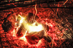 firelight Photos stock