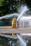Fireman on the fire stock photos