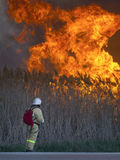 Fireman is looking at a huge fire. The fireman is looking at a huge fire Stock Image