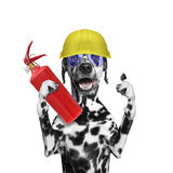 Fireman rescues a dog from the fire all. Isolated on white stock photos