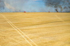 Fireman truck working on the field on fire Stock Photography