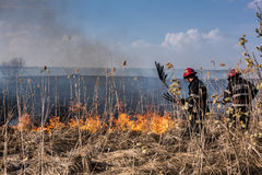 Firemen in action. Royalty Free Stock Image