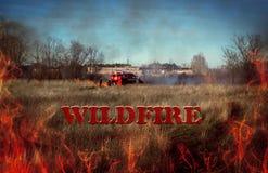 Firemen extinguish. flames close-up. inscription wildfire. Firemen extinguish wildfire. flames close-up. billboard. inscription wildfire Stock Photos
