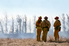 Firemen Looking At Damage. Three firemen overlook damage caused by a brush fire Royalty Free Stock Images