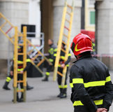 Firemen during rescue operations with a wooden ladder Royalty Free Stock Photo