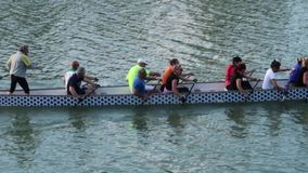 Amateurs team of rowing on the Arno river stock video