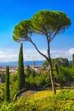 Firenze o Firenze Palazzo Vecchio, alberi, paesaggio urbano aereo franco Fotografia Stock Libera da Diritti